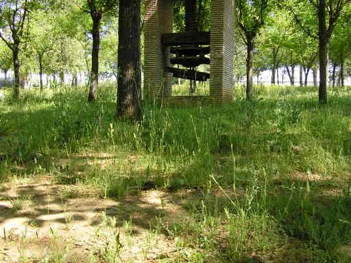 Zona de la arboleda