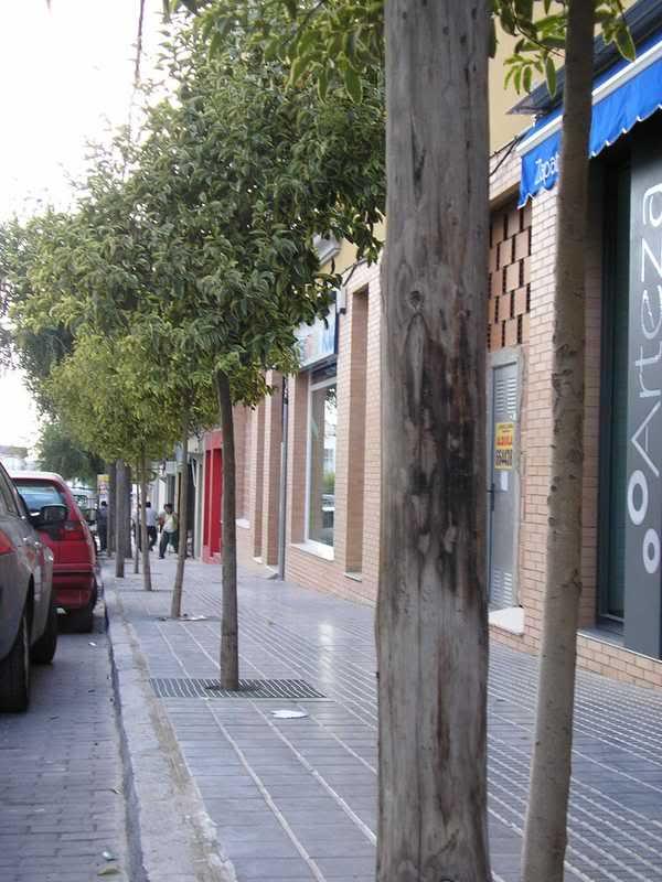 Postes en la Avenida de Andalucía